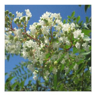 Crape Myrtle Tree Branch 5.25x5.25 Square Paper Invitation Card