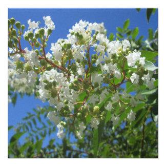 Crape Myrtle Tree Branch Personalized Announcements