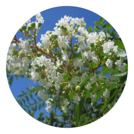 Crape Myrtle Tree Branch Custom Invitation