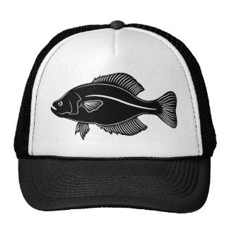 Crappie Fish Cap