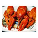 Crawfish Crawdads Craytfish Postcard