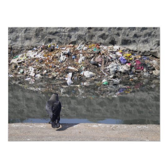 Craw's focus on garbage poster