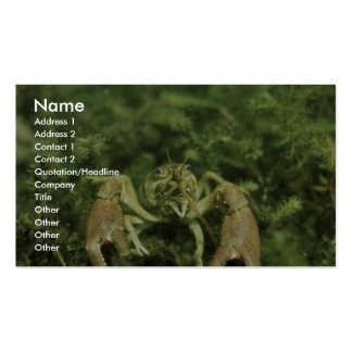 Crayfish- close-up underwater business card template