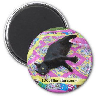 Crazed Quilt Cat Magnet