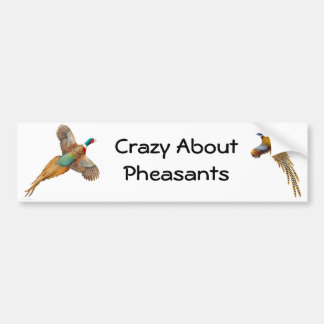 Crazy About Pheasants Bumper Sticker