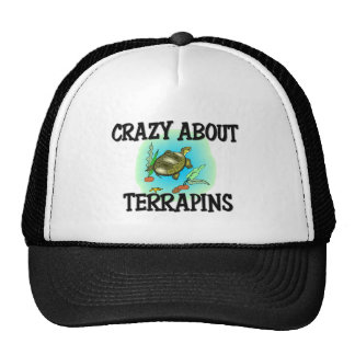 Crazy About Terrapins Hats