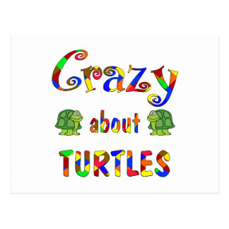Crazy About Turtles Postcard
