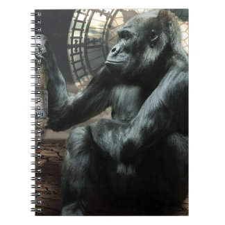 Crazy Ape Gorilla Animal Notebook