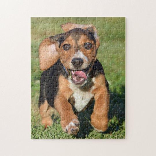 Crazy Beagle Puppy Running Jigsaw Puzzle