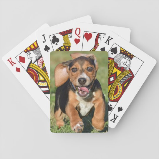 Crazy Beagle Puppy Running Playing Cards