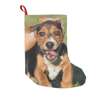 Crazy Beagle Puppy Running Small Christmas Stocking