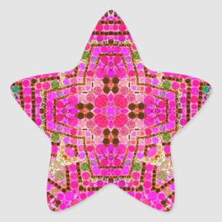 Crazy Beautiful Pink Abstract Star Sticker