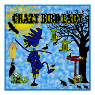 Crazy Bird Lady Design Poster