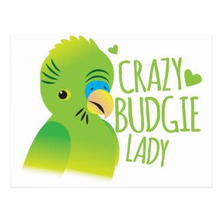 Crazy budgie lady postcard