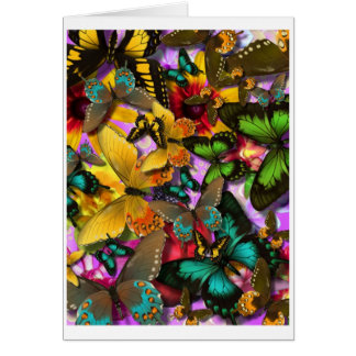 Crazy Butterflies Greeting Card