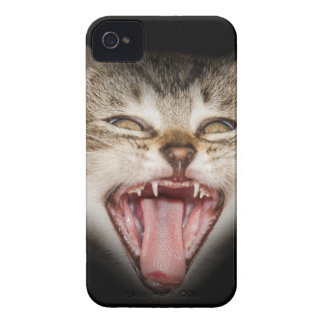 Crazy Cat Kitten Face iPhone 4 Covers