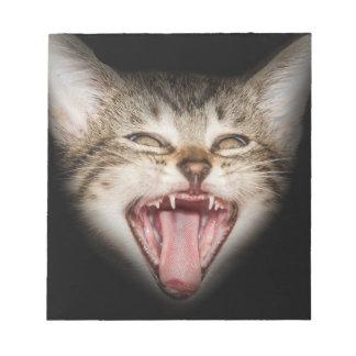 Crazy Cat Kitten Face Notepad