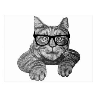 crazy cat lady geek cat post cards