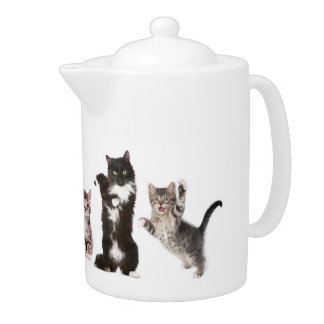 Crazy Cat Teapot