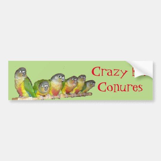 Crazy for Conures! Bumper Sticker