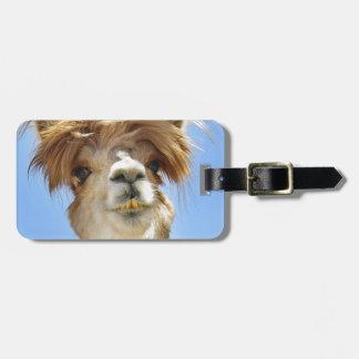 Crazy Hair Alpaca Luggage Tag