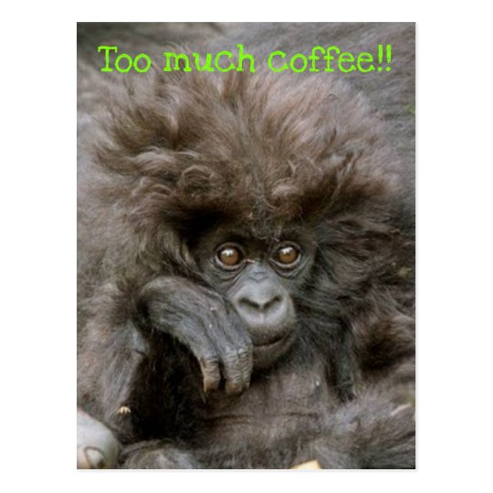 Crazy Hair Monkey Too Much Coffee Postcard