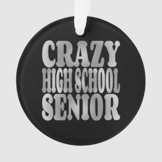 Crazy High School Senior in Silver
