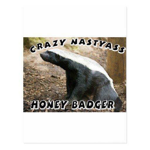crazy honey badger post card