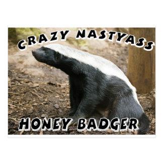 crazy honey badger postcard