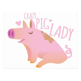 Crazy Pig Lady Postcard