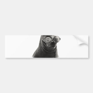Crazy Seal Face Mask Funny Bumper Sticker