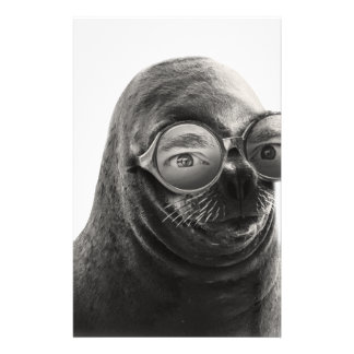 Crazy Seal Face Mask Funny Stationery