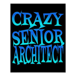 Crazy Senior Architect Poster