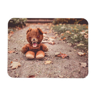Crazy teddy bear rectangular photo magnet