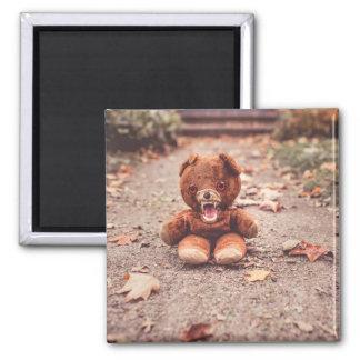 Crazy teddy bear square magnet