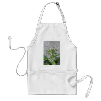 Crazy Weed Plant Aprons