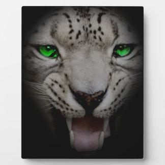 Crazy Wild Leopard Animal Cat Plaque