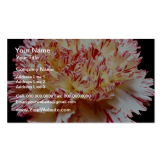 Cream and red carnation  flowers business card templates
