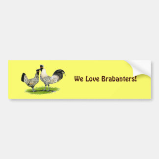 Cream Brabanter Chickens Bumper Sticker