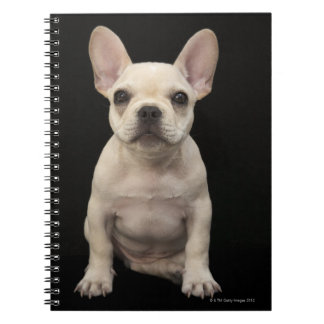 Cream colored French Bulldog puppy Notebook