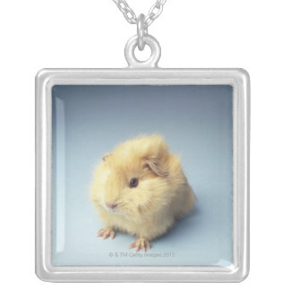 Cream colored Guinea pig Square Pendant Necklace