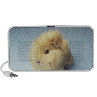 Cream colored Guinea pig iPhone Speakers