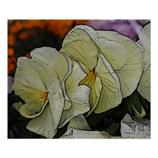 Cream Colored Pansies Artwork Wall Art / Poster