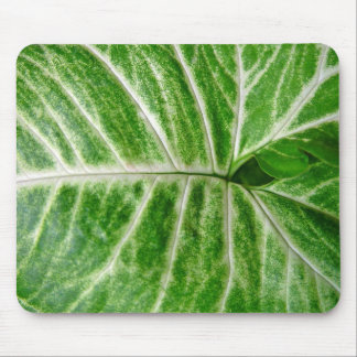 Cream patterns on green leaf mouse pads