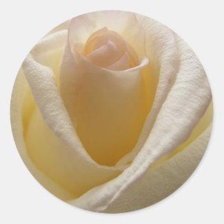 Cream Rose Envelope Closures Round Sticker