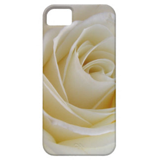 Cream rose iPhone 5 case
