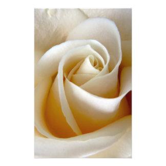 Cream Rose Wedding Photo Flyers
