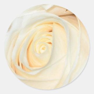 Cream Rosebud Sticker