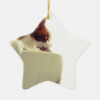 Creamy Cat Christmas Ornament