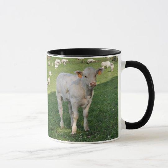 Creamy white Charolais calf Mug